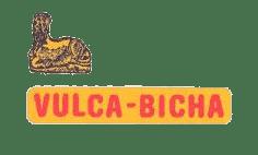 logo Vulcabicha