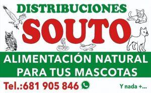 Distribuciones Souto